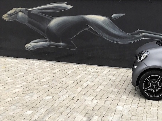 Smarte Kunst: Hase und Igel